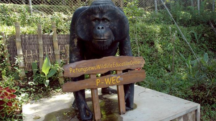 Orangutan sculpture