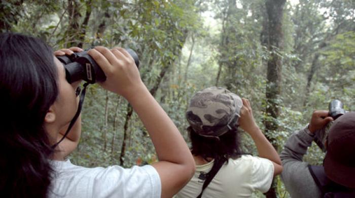 Tips Berwisata Ramah Lingkungan