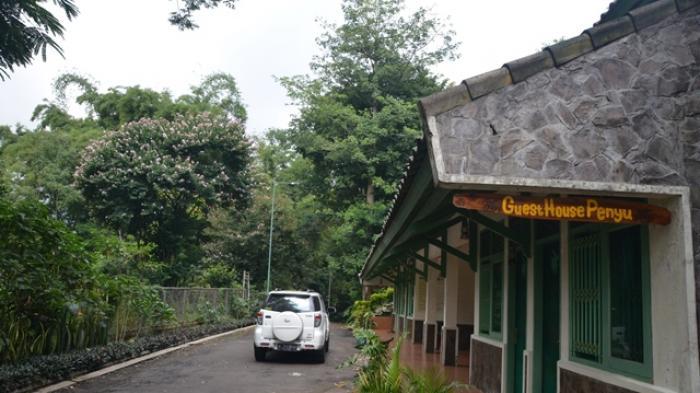 Guest House Penyu