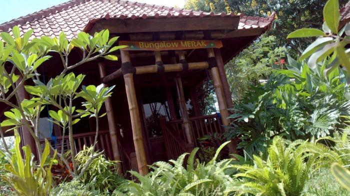 "Guest House ""Merak"" (Peafowl) outside"