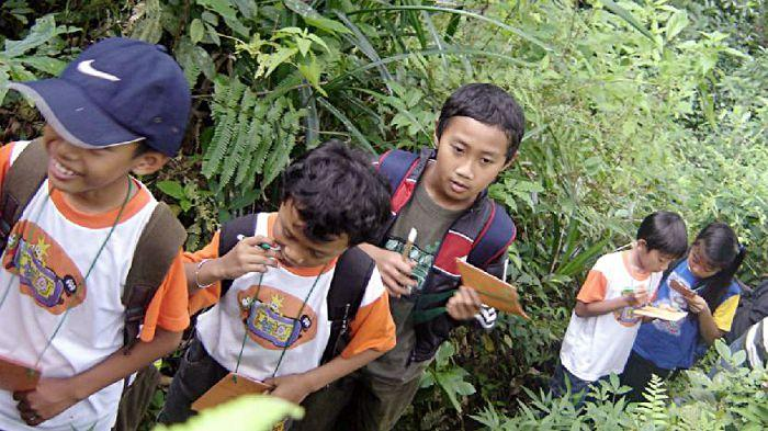 Forest Education